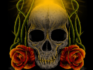 Skull and Rose by Farsya