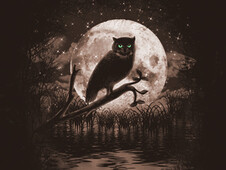 Owl Moon T-Shirt Design by