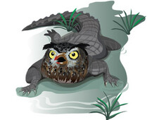 Owligator T-Shirt Design by