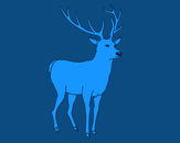 Blue Deer by sumocloud