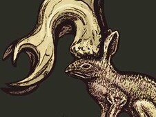Jackalope T-Shirt Design by