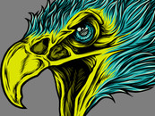 Eagle Skull Head by sach13
