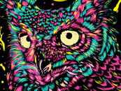 NEOWL by opiku