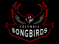 Bioshock Songbird Team Logo T-Shirt Design by