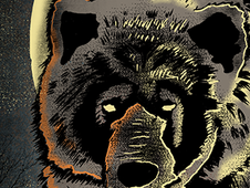BEAR T-Shirt Design by