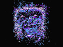 """GORILLA"" T-Shirt Design by"