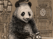 Cycling Panda by Winardi