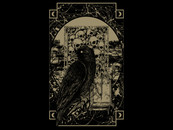 crow in the dark by BayuIdea