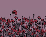 creeping poppies by Lexane