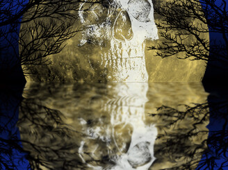 Eternal Reflection by 937DesignCollaboration