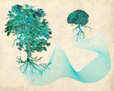Rooted Thinking by 937DesignCollaboration