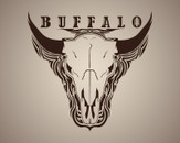 Buffalo by _Matt