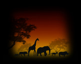 Sunset on the African continent by generalfilgueiras