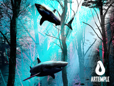 Shark forest T-Shirt Design by