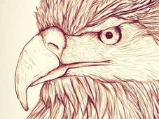 Apache Eagle T-Shirt Design by