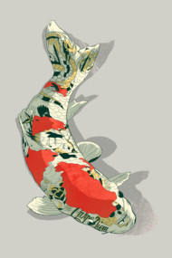 Tattooed Koi