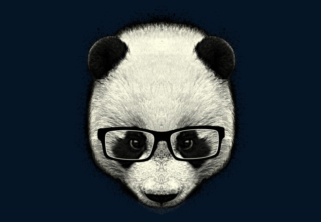Serious Panda  Artwork