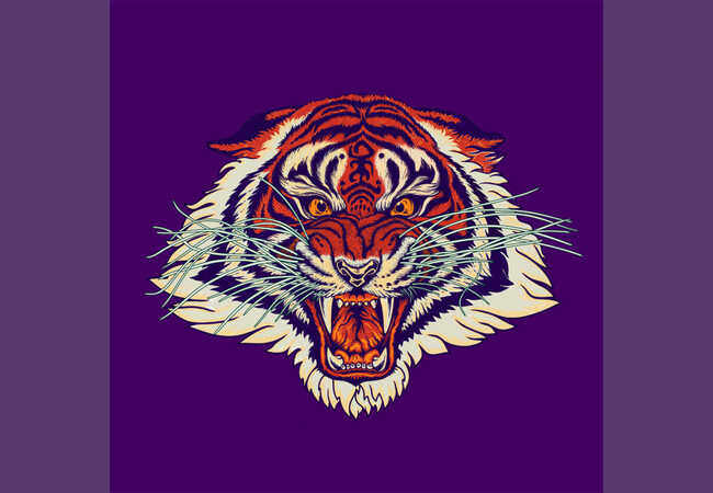 Weird tiger  Artwork