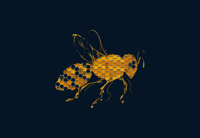 Honey Bee  Artwork