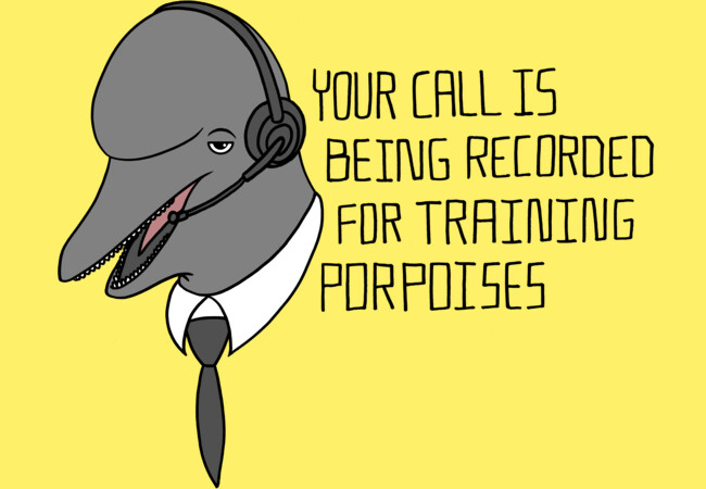 For Training Porpoises  Artwork