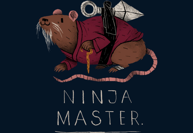 ninja master (colours)  Artwork