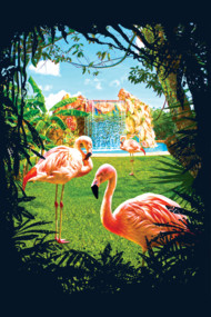 Summer in Paradise with Exotic Pink Flamingos