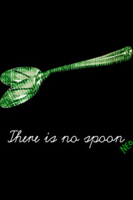 there is no spoon!