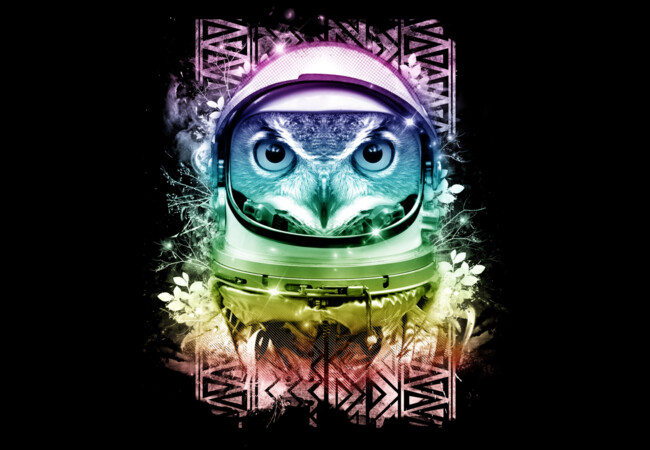 Astro Owl  Artwork