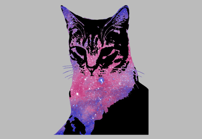 [ Space Cat ]  Artwork