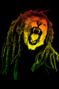 Reggae Jungle
