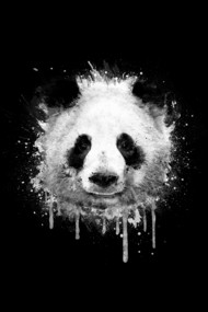 Cool Abstract Graffiti Watercolor Panda Portrait in Black & Whit