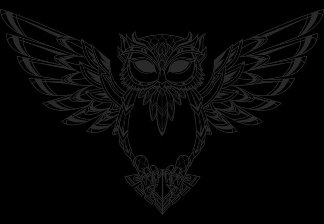 COSMIC OWL LINE  Artwork