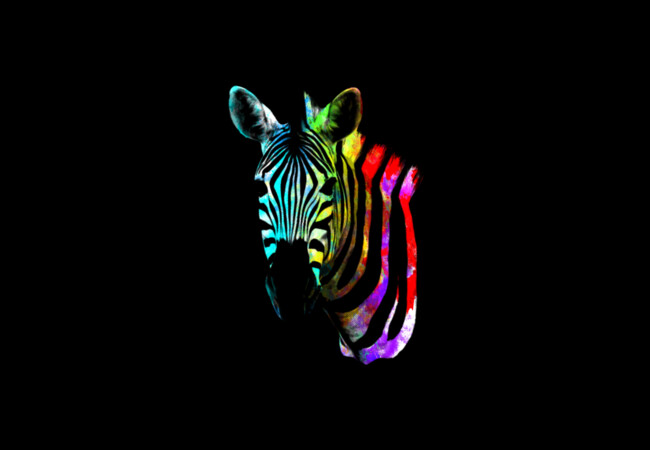 The Zebra  Artwork