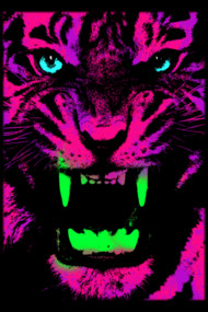 Tiger Pop T-shirt 01