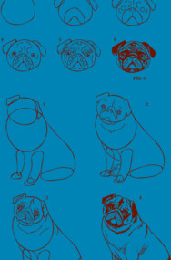 How To Draw Pug Life