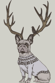 Deer Frenchie