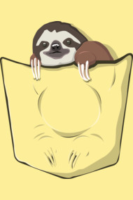 Sloth in a pocket