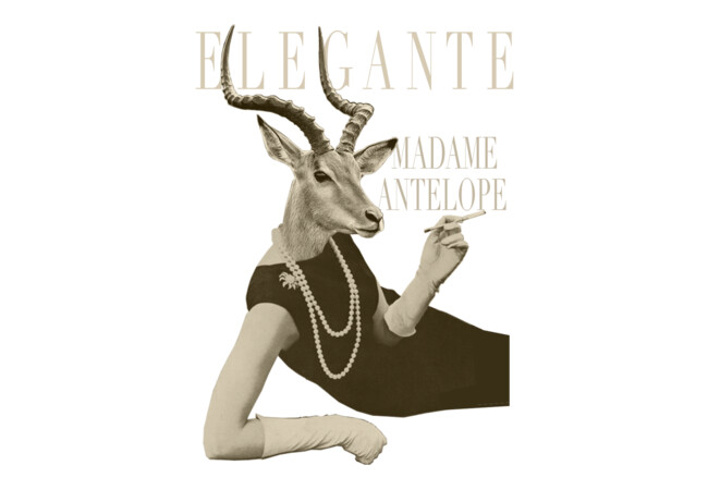 Elegante Madame Antelope  Artwork
