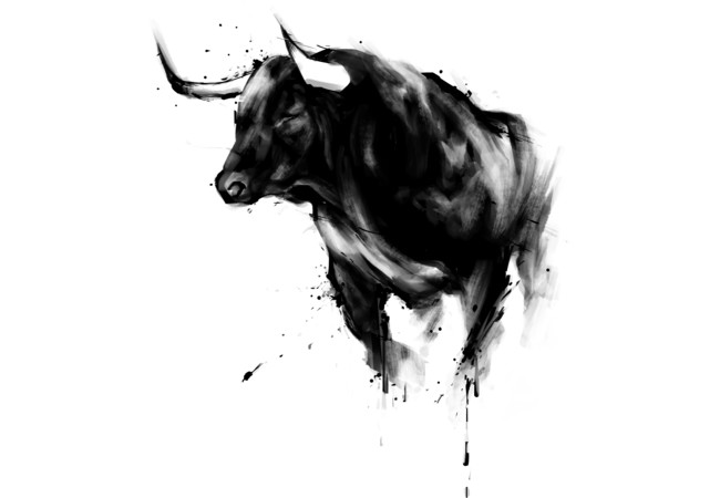 Bull Shirt  Artwork