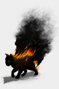 This Cat Is On Fire!