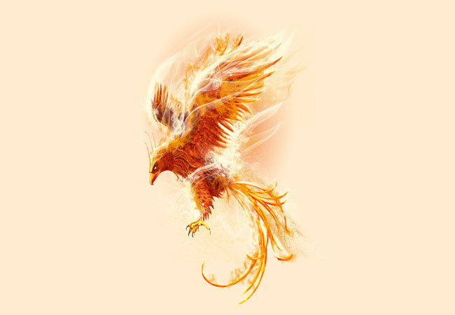 fenix  Artwork