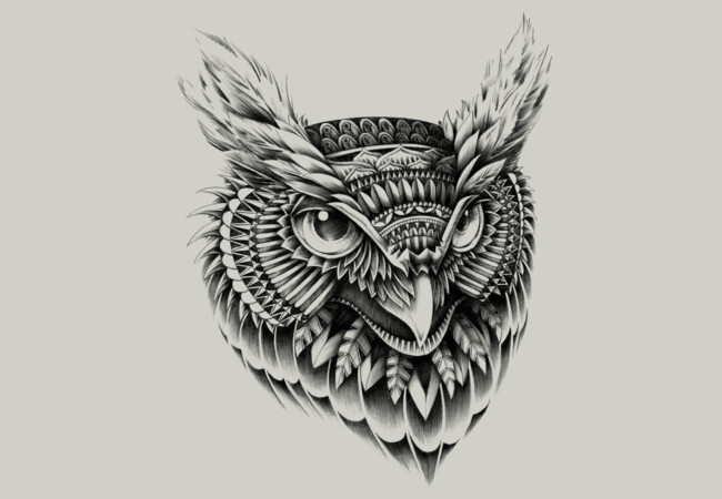 Ornate Owl Head  Artwork