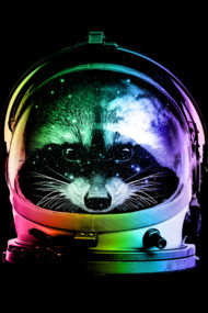 astronaut raccoon
