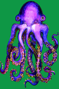 Purple Cephalopod