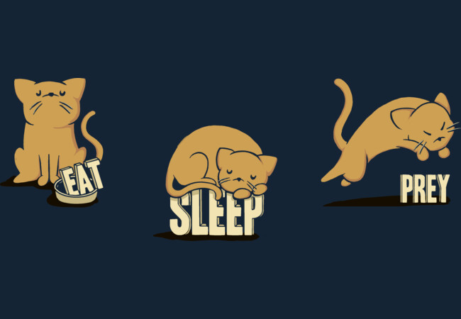 Cats: Eat, Sleep, Prey  Artwork
