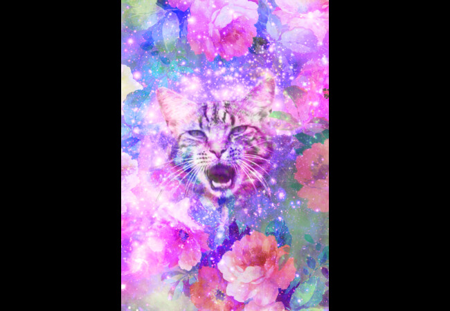 Girly Kitten Cat Romantic Floral Pink Nebula   Artwork