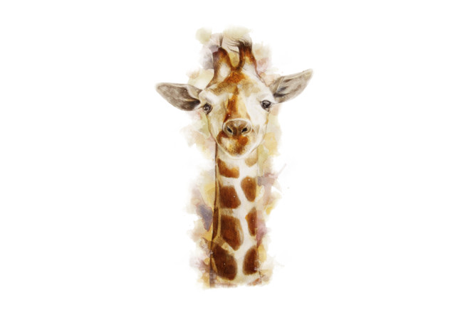 Giraffe  Artwork