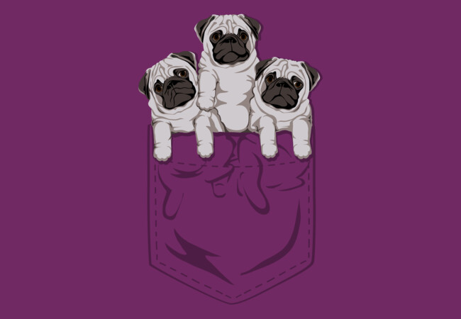 Pocket Pug  Artwork