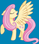 Fluttershy The Model