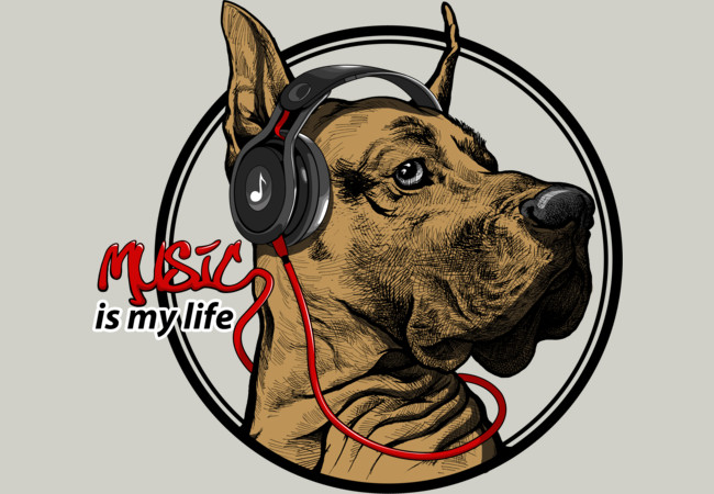 Music is my life  Artwork
